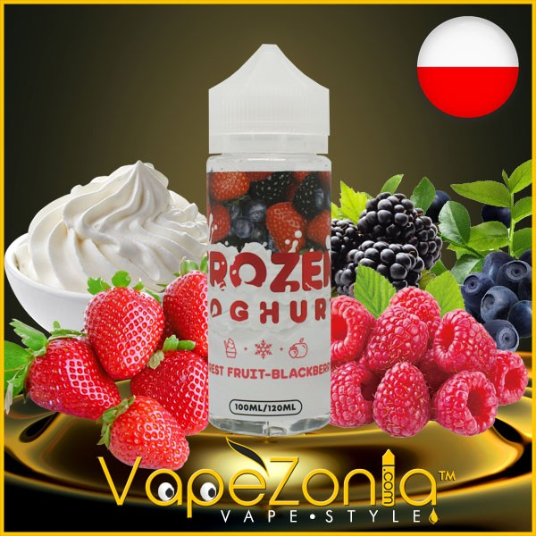 Frozen Yoghurt FOREST FRUIT BLACKBERRY 100 ml