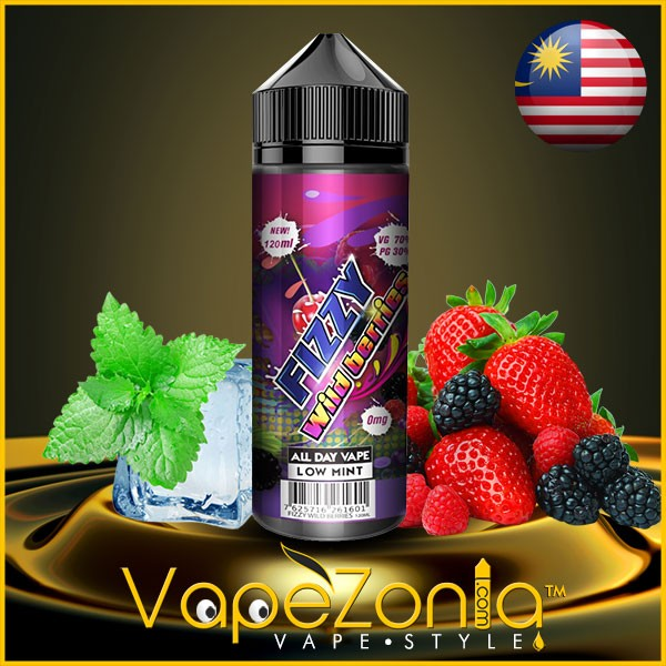 Fizzy Juice WILD BERRIES 100 ml